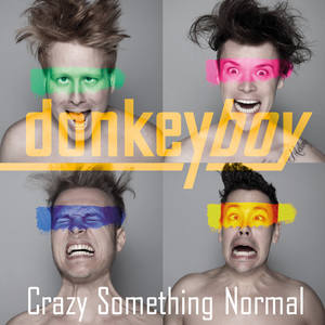 Donkeyboy - Crazy Something Normal