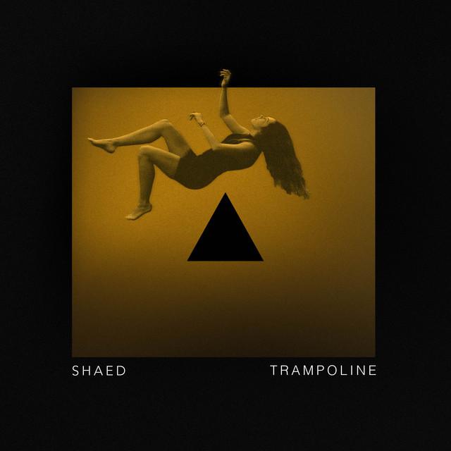 Shaed, Zayne - Trampoline